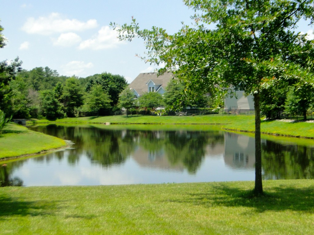 844 Falls Creek Drive Chesapeake - view of pond