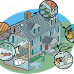 Home Maintenance Tips For The Summer!